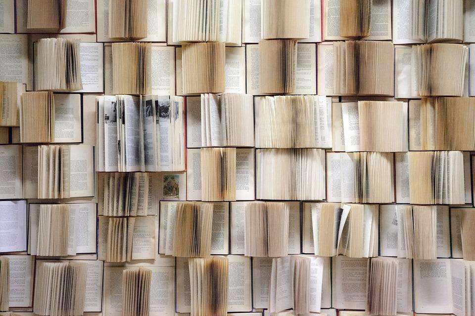 muro di libri